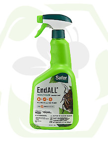Safer Endall 32oz