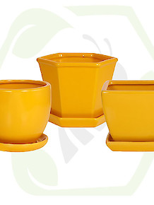 Indoor Ceramic Pots - Yellow