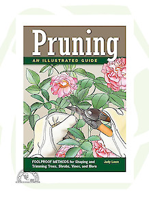 Pruning: An Illustrated Guide